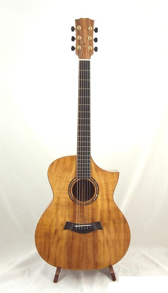 The Acoustic guitar specialists Maton Martin Taylor