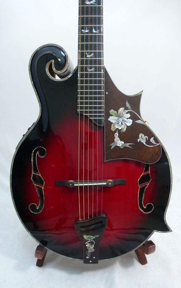 Ukulele - Nice Quality F5 solid Guitar, Fishman EQ, great hummingbirds patter inlay